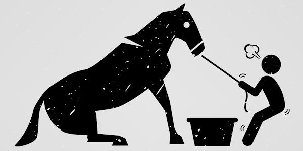 HorseToWater